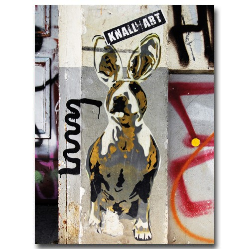 Rabbitdog